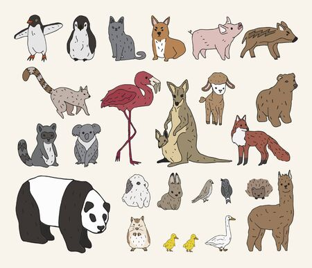 illustration of various types of animals