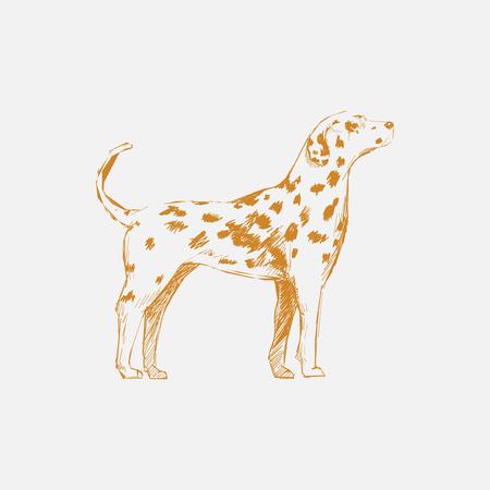 Illustration drawing style of dog