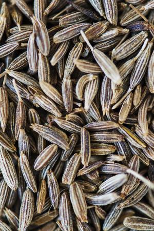 Closeup of cumin seed