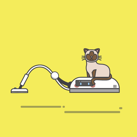 Cat on a floating vacuum machine Imagens - 115533409