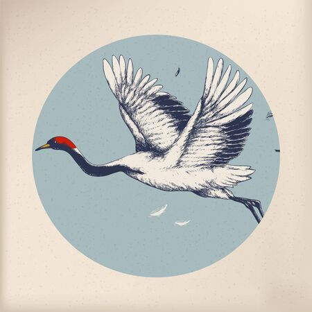 Japanese tradition style crane Banque d'images - 95598044