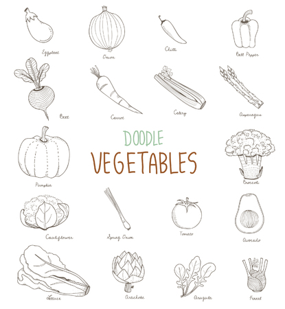 Illustration of different kinds of vegetables 스톡 콘텐츠 - 95180697