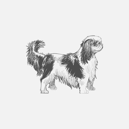 犬のイラスト画スタイル 写真素材