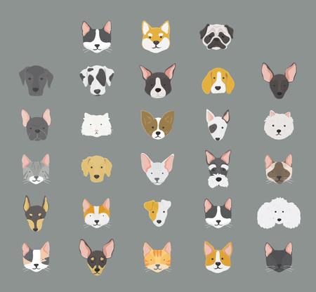 猫と犬のアイコンコレクション 写真素材