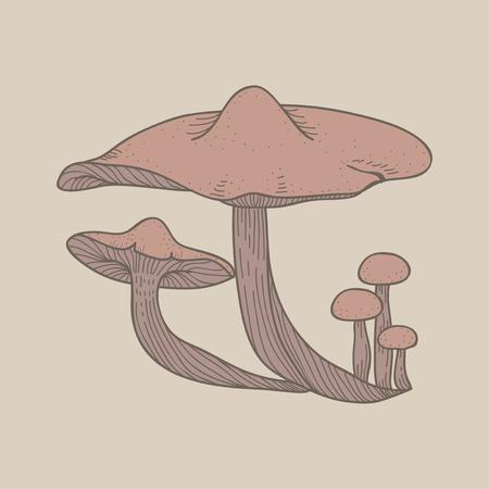Illustration of mushroom Foto de archivo - 95595794