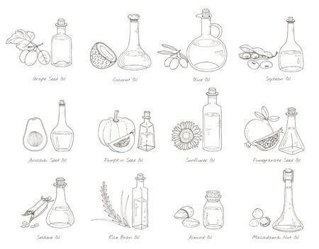 Illustration of different kinds of vegetables Foto de archivo - 95595584
