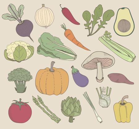 Illustration of different kinds of vegetables Stok Fotoğraf - 95595506