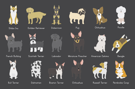 Collection of dogs illustration Banco de Imagens