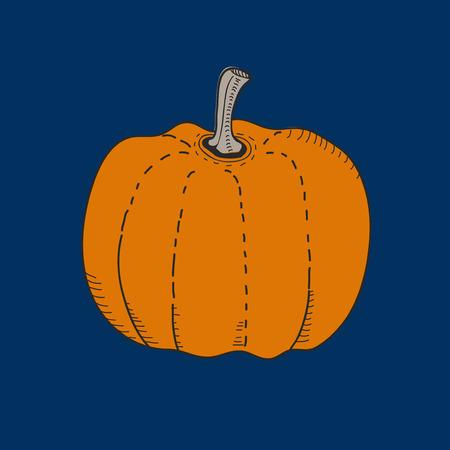 Illustration of a pumpkin Foto de archivo - 95974864