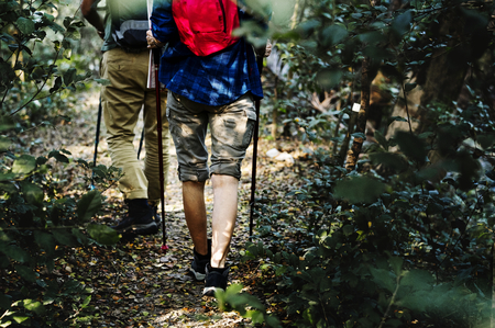 People hiking in a forest Stock Photo