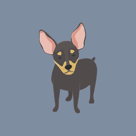 Notion de chien Banque d'images