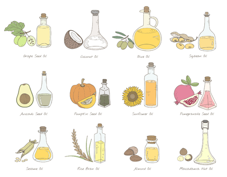 Illustration of different kinds of vegetables Stock fotó - 96936055