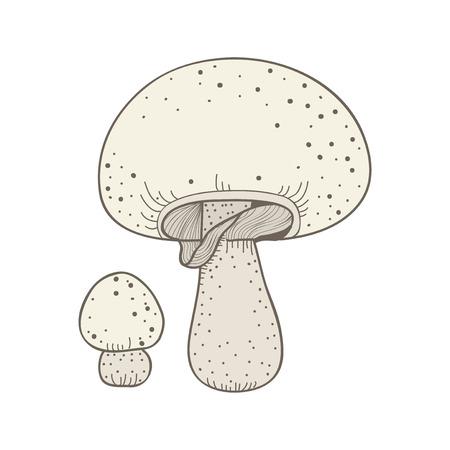 Illustration of mushroom Foto de archivo - 96936063