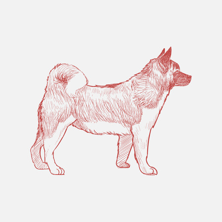 Illustration drawing style of dog Banque d'images - 96798822