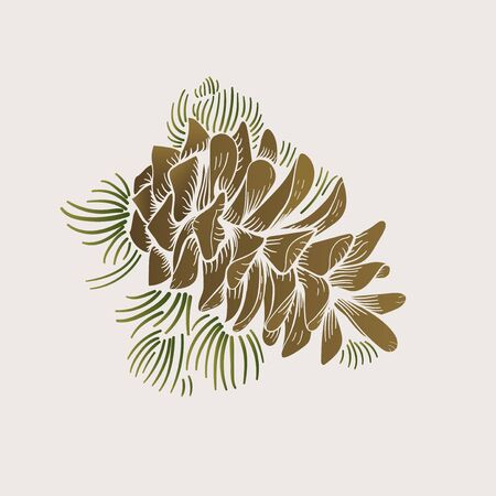Illustration of pinecone Banco de Imagens - 96572484