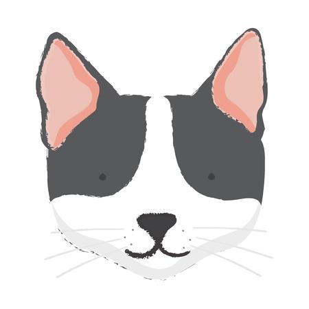 Concept de chat de compagnie