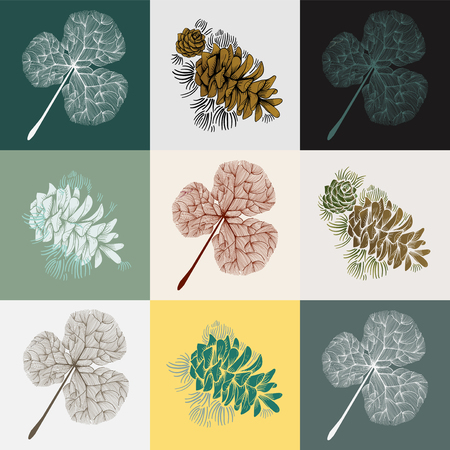 Pine trees concept Фото со стока