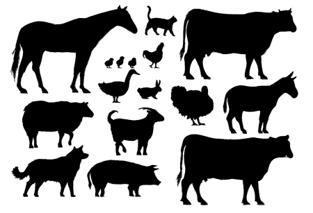 Illustration drawing style of farm animals collection