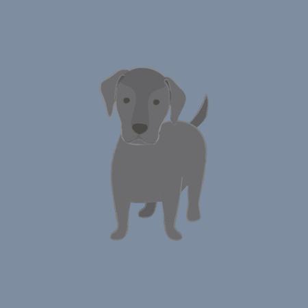 Concept de chien de compagnie Banque d'images