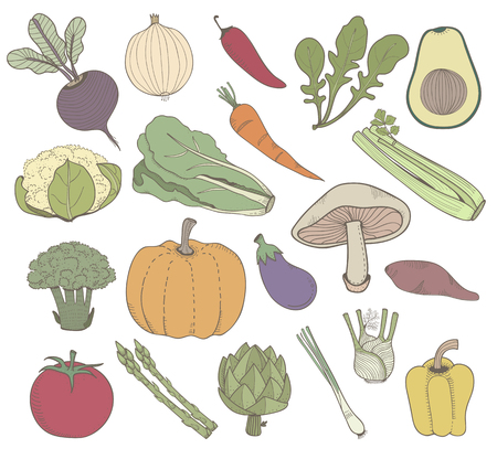Illustration of different kinds of vegetables