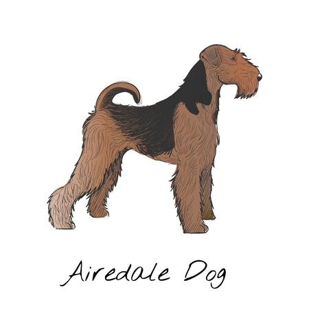 Illustration of dog Zdjęcie Seryjne