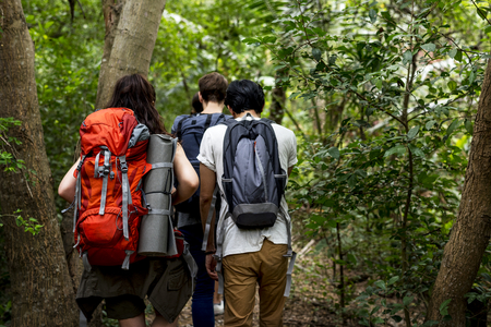 Young people hiking in a forest