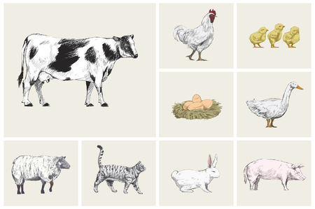 Illustration drawing style of animal collection Stock Photo