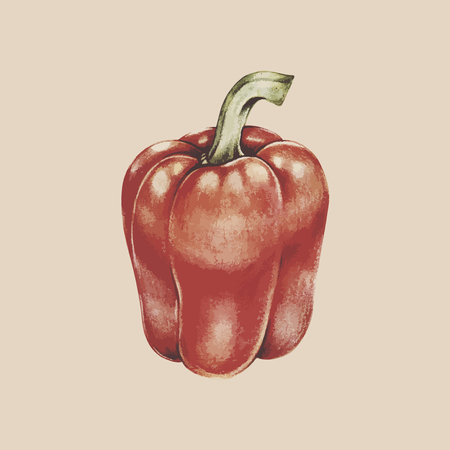 Painting of a capsicum 写真素材