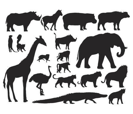 Animals Illustration Art Set Standard-Bild