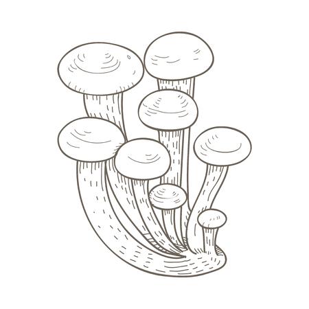 Illustration of mushroom Reklamní fotografie - 97155882