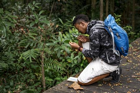 Biologist in a forest Standard-Bild