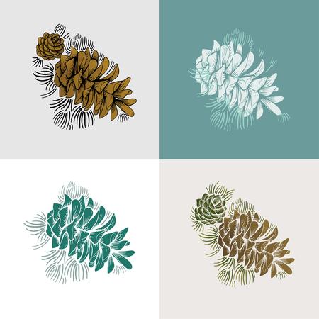 Illustrations of pine cones 写真素材