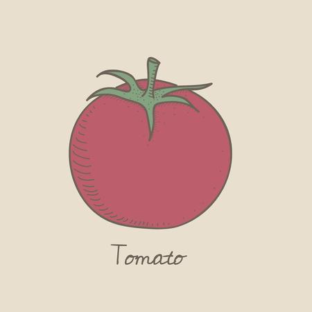 Illustration of a tomato