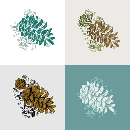Illustration of pine cones