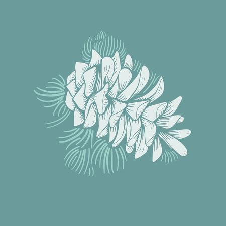 Illustration of pinecone