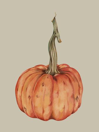 Painting of a pumpkin