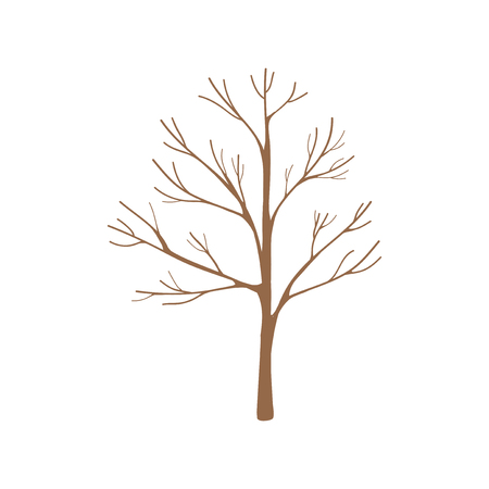 Illustration of a dried tree