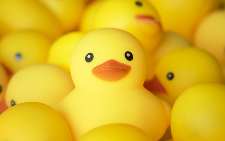 Closeup of rubber duckies Stockfoto