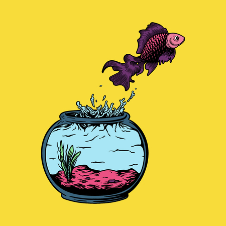 Pet fish jumping out of the fish tank risk and freedom concept 스톡 콘텐츠