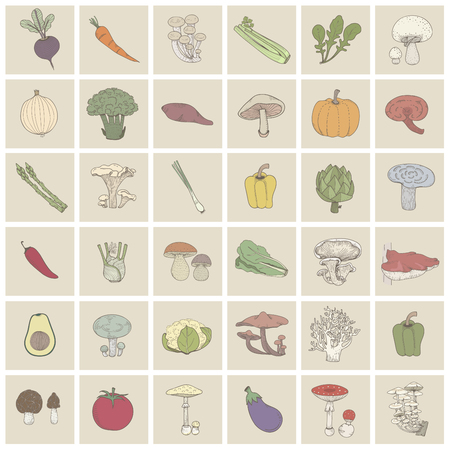 Collection of food ingredients Stock Photo