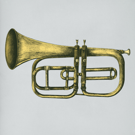 Hand drawn trumpet isolated on background