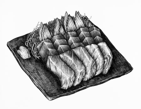 Hand drawn salmon sashimi dish