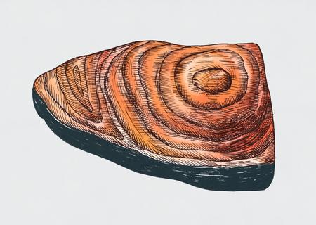 Hand drawn fish fillet Reklamní fotografie - 99962528