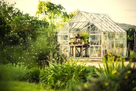 Kas in een weelderige tuin