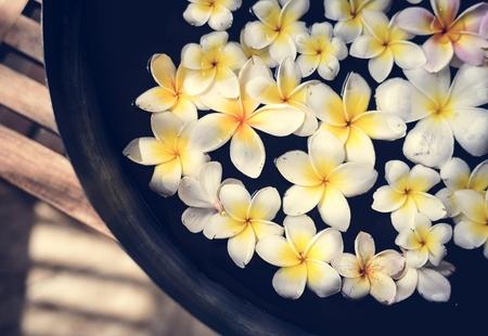 Frangipani flowers at a spa salon