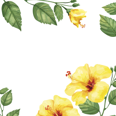 Hand drawn yellow hibiscus flower