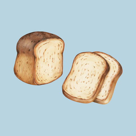Freshly baked bread hand-drawn illustration