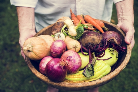 Hands holding basket of mixed veggie produce from farm Stockfoto