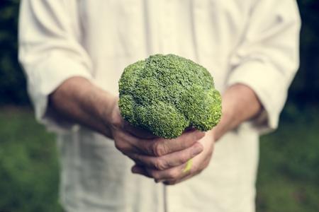 Hands holding broccoli organic produce from farm