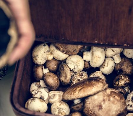 Closeup of various fresh mushrooms in wooden basket